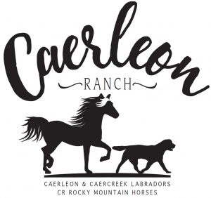 Caerleon Ranch