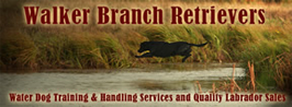 Walker Branch Retrievers