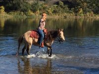 Shelby Western Water
